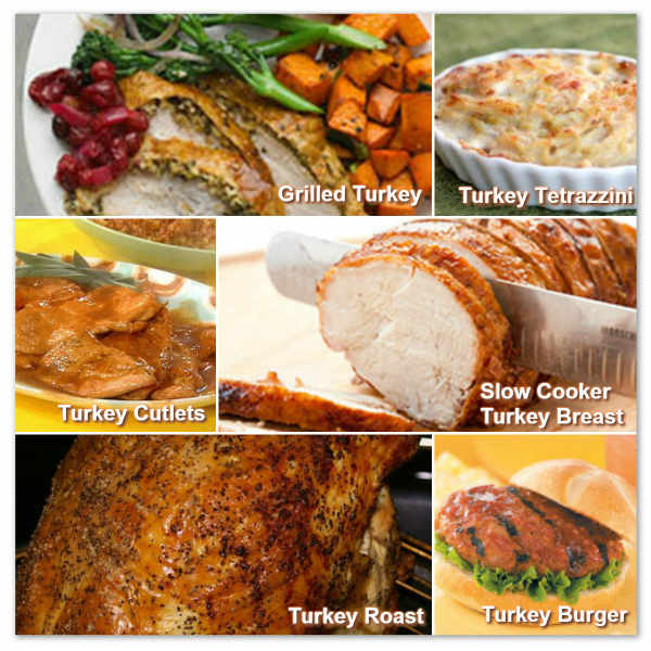 Easy Turkey Recipes For Thanksgiving